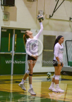 Gallery: Volleyball Enumclaw @ Kentwood